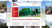 Cape-Cricket-Web-Design-SS